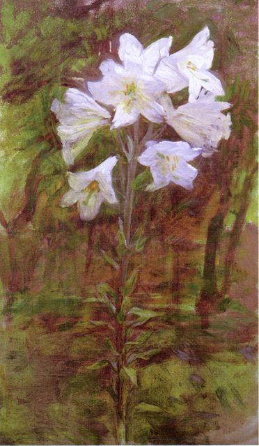 Κρίνα - 1890
