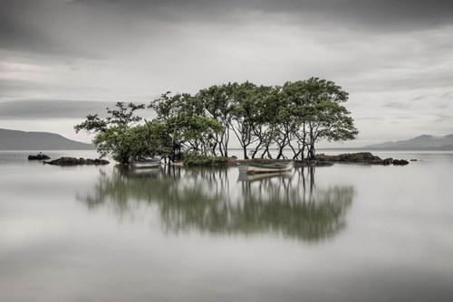reflection91