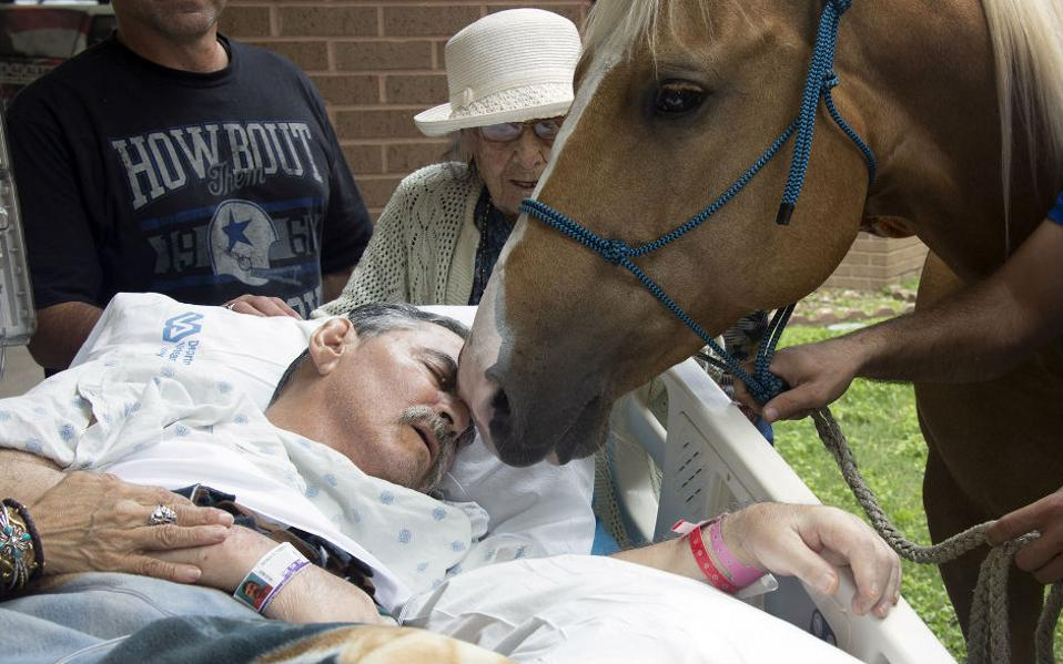 Με τους αγαπημένους του θέλησε να περάσει τις τελευταίες στιγμές του ο βετεράνος του Βιετνάμ, Roberto Gonzalez στο Audie L. Murphy Memorial Veterans Hospital όπου νοσηλευόταν. Ανάμεσα σε αυτούς, ήταν και τα δυο αγαπημένα του άλογα που οι οικείοι του φρόντισαν, μετά την σύμφωνη γνώμη και των υπευθύνων του νοσοκομείου, να τα φέρουν κοντά του, μεταφέροντας και τον ίδιο στο προαύλιο του νοσοκομείου. Δυο ημέρες μετά την συνάντηση, ο Gonzalez ,γαλήνιος πια, εξέπνευσε. Lupe Hernandez/South Texas Veterans Health Care System via AP