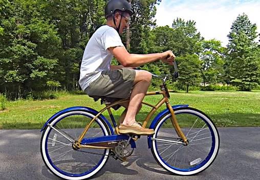 backwardsbrainbike-2