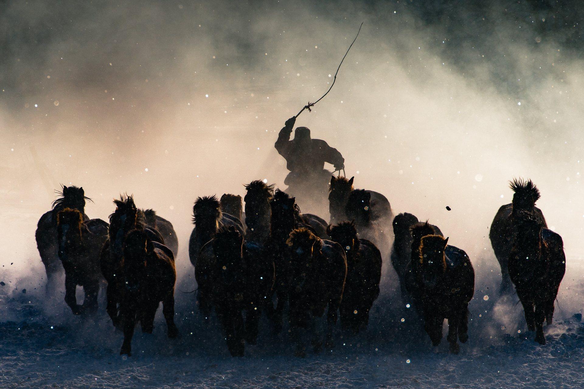 Νικητής Μεγάλου/Πρώτου Βραβείου: Winter Horseman. Ο χειμώνας στην ενδοχώρα της Μογγολίας είναι αδυσώπητος. Με τη θερμοκρασία στους -20F και το χιόνι να πέφτει αδιάκοπα ήταν πολύ δύσκολο να πείσω τον εαυτό μου να βγει έξω από το αυτοκίνητο και να τραβήξει φωτογραφίες – μέχρι που είδα τους καβαλάρηδες να επιδεικνύουν τις ικανότητές τους τιθασεύοντας τα άλογα από απόσταση. Πήρα γρήγορα τους τηλεφακούς μου και απαθανάτισα τη στιγμή όπου ένας καβαλάρης έβγαινε μέσα από την ομίχλη. Photograph: Anthony Lau/National Geographic Travel Photographer of the Year Contest