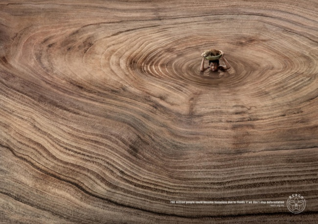 Μια υπενθύμιση ότι η αποψίλωση των δασών προκαλεί πραγματικό πρόβλημα.