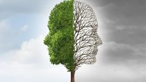 Η θεωρία της γνωστικής δυσαρμονίας – Όταν επιλέγουμε το βολικό ψέμα από μια άβολη αλήθεια