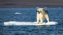 2016: η θερμότερη χρονιά στην ιστορία