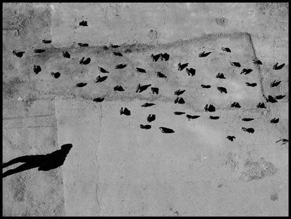 Γιόχαν Φίχτε – Ότι τους τρομάζει, σαν φάντασμα, είναι πως νιώθουν το ανεξάρτητο πνεύμα που αφυπνίζει η φιλοσοφία μου…