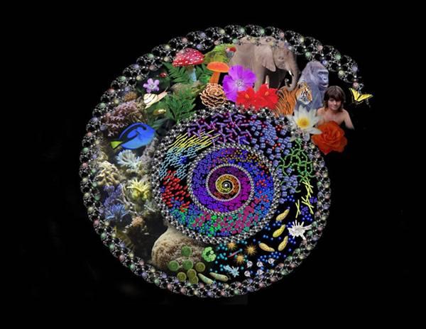 Γιάννης Μανέτας – Η ζωή χωρίς εξέλιξη είναι αδιέξοδη